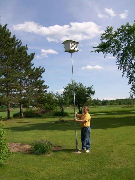Telescopic Birdhouse Pole